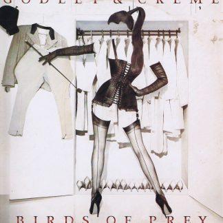 Godley & Creme - Birds of Prey - POLD 5070 - LP Vinyl Record